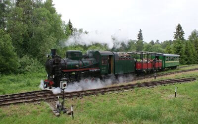 Steamdays at 31 July and 1st August